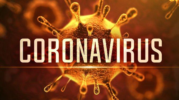 Stanmore Public School Coronavirus