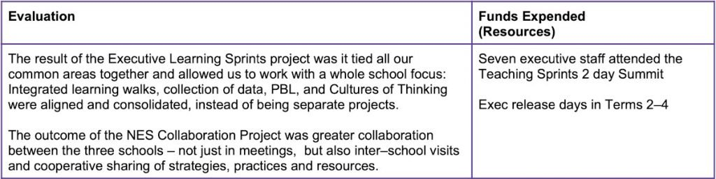 Stanmore Public School Leading Change