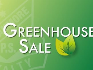 Stanmore Public School Greenhouse Sale